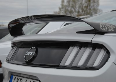 Mustang GT Carbon